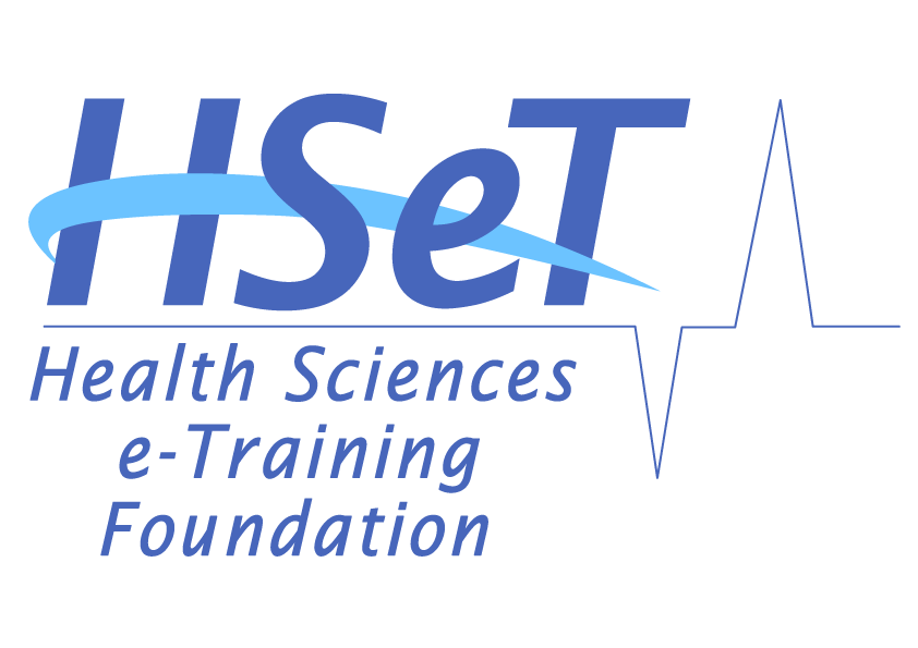 HSeT 2019 annual report